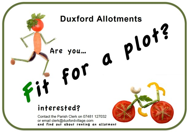 allotment-poster