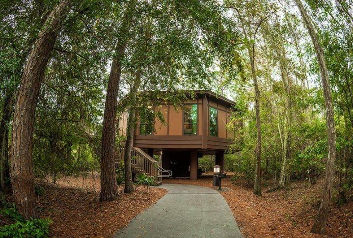 Disney's Treehouse Villas shaded by trees