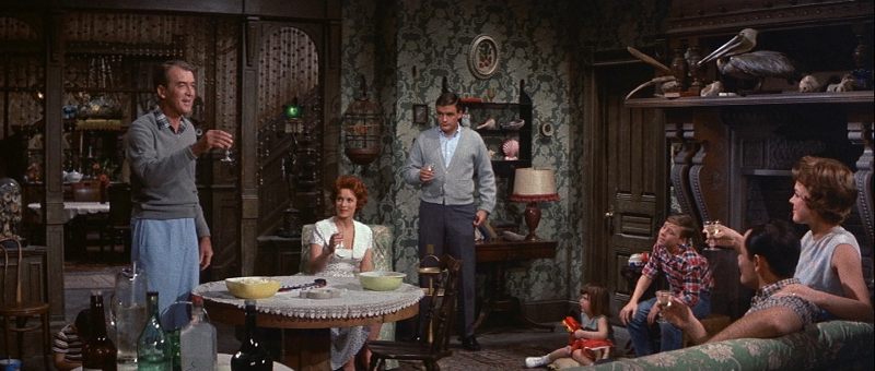Image result for Mr. Hobbs Takes a Vacation 1962 Natalie Trundy