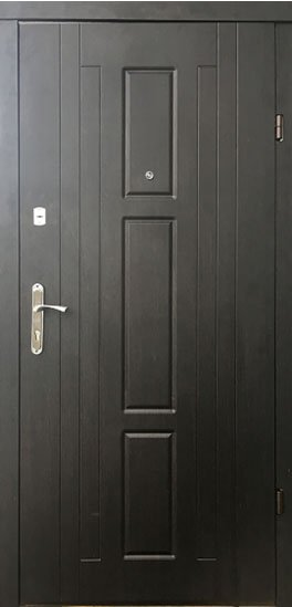 Двери входные Форт Трояна