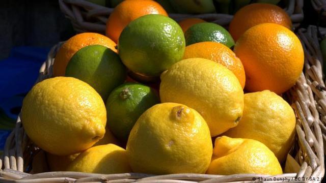 verschiedene Zitrusfrüchte