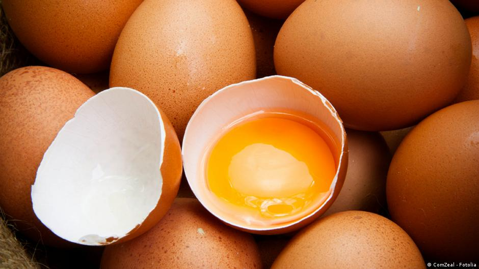 Image result for what is a herbal egg