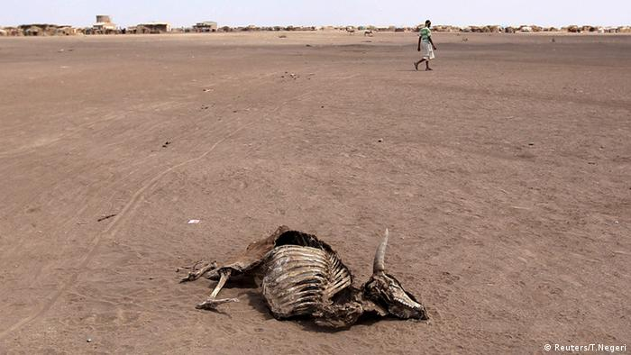 Äthiopien Hunger Hungerhilfe (Reuters/T.Negeri)