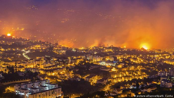 Forest fire in Funchal, Madeira Island, Portugal, 09 August 2016 (Photo: picture-alliance/dpa/G. Cunha)