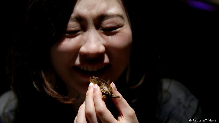 Japan's insect specialties for Valentine's Day (Reuters/T. Hanai)