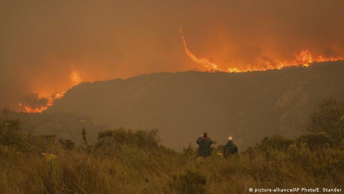 Incêndio descontrolado na África do Sul: sob condições normais, fogo integra ciclo natural nas savanas