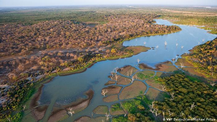 Tansania Selous Reservat (WWF Deutschland/Michael Poliza)