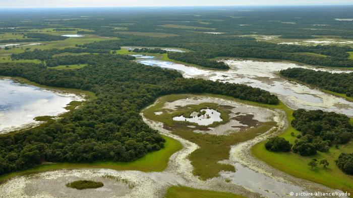 The Pantanal wetlands in Brazil (picture-alliance/Kyodo)