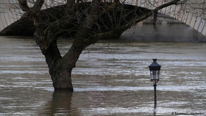 Street lamp and tree half-submerged (Reuters/C. Hartmann)