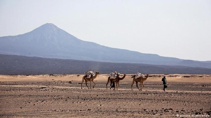 (FILE) A file photograph dated 2011 showing camels with their guide at Danakil desert in northern Ethiopia in front of Erta Ale volcano. Reports state that on 18 January 2012, the Ethiopian government said that two Germans, two Hungarians and an Austrian tourists were killed by gunmen as they visited Erta Ale volcano in the remote region of Afar in northern Ethiopia in early hours of 17 January. Gunmen also kidnapped two Germans and two Ethiopians while injuring a Hungarian and an Italian in an attack took place near the Eritrean border. Ethiopia blamed its neighbor Eritrea for the attack, but Eritrea dismissed the allegation. In 2007, five Europeans and 13 Ethiopians were kidnapped in Afar region that is prone to banditry and separatist rebel fighters' movement. EPA/JOSEF FRIEDHUBER