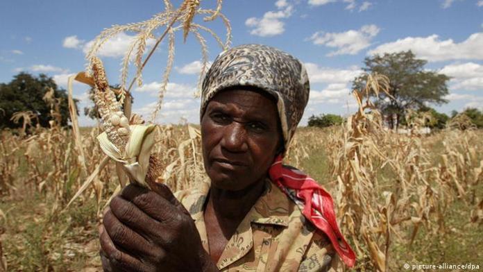 Afrički seljaci