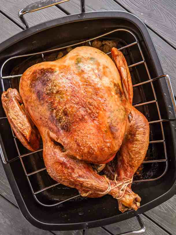 Golden brown and delicious Thanksgiving Turkey