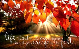 crisp fall