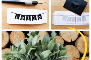 How to Make a DIY Hello Planter for Spring