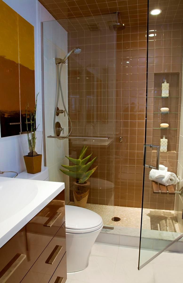20 Stunning Small Bathroom Designs on Simple Small Bathroom Ideas  id=72227