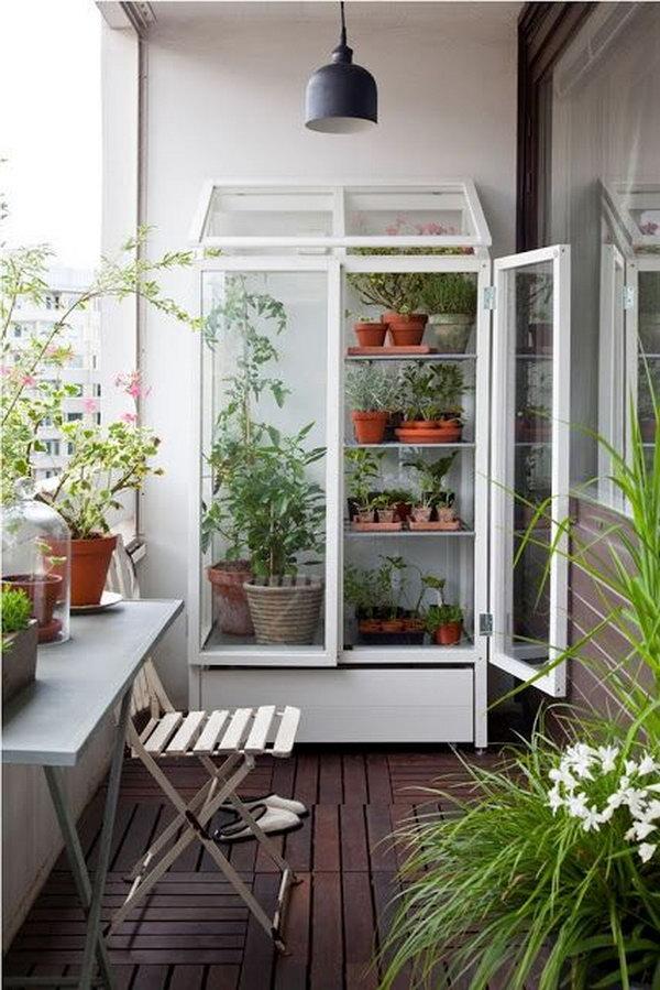 Balcony garden with cabinet turned greenhouse Dwellingdecor