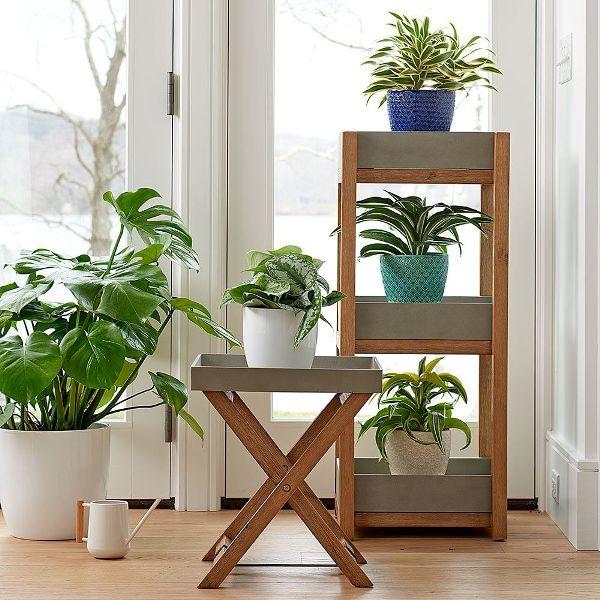 Plant Risers