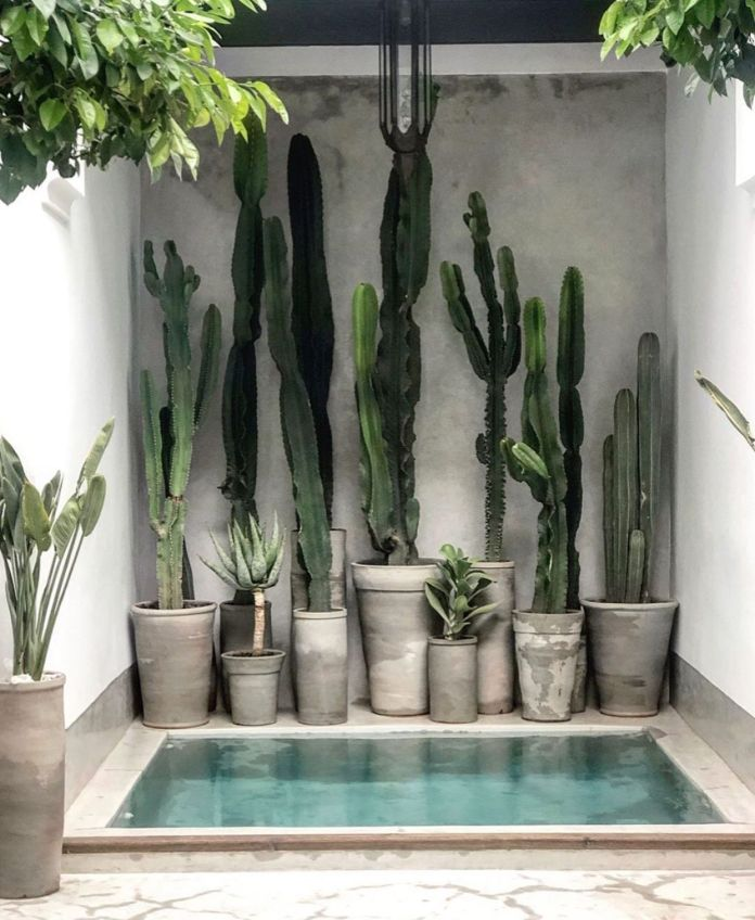 12 -A mini swimming pool for an ideal water point in an outdoor courtyard