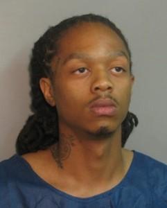 Michael D Campbell, DUI fatal Oak Park Il 071513