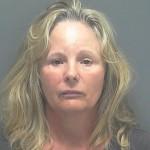 Claudia Ann Hummer DUI Lee Co So FL 120914