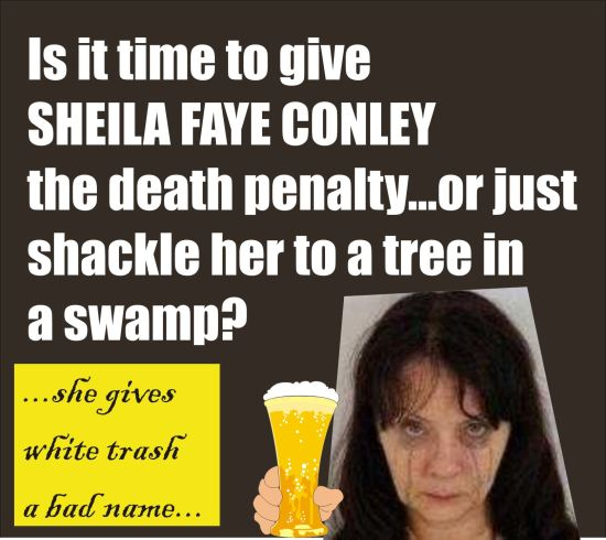 Sheila Faye Conley gives white trash a bad name 5th DUI 2 dead