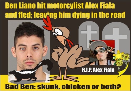 Ben Liano skunk chicken or both DUI killer in Temecula Calif 062915
