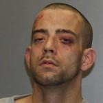 PALENIK CARL DWAI New York State Police 102115