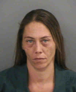 Tiffanie Dawn Ames DUI Collier County Sheriff 121315