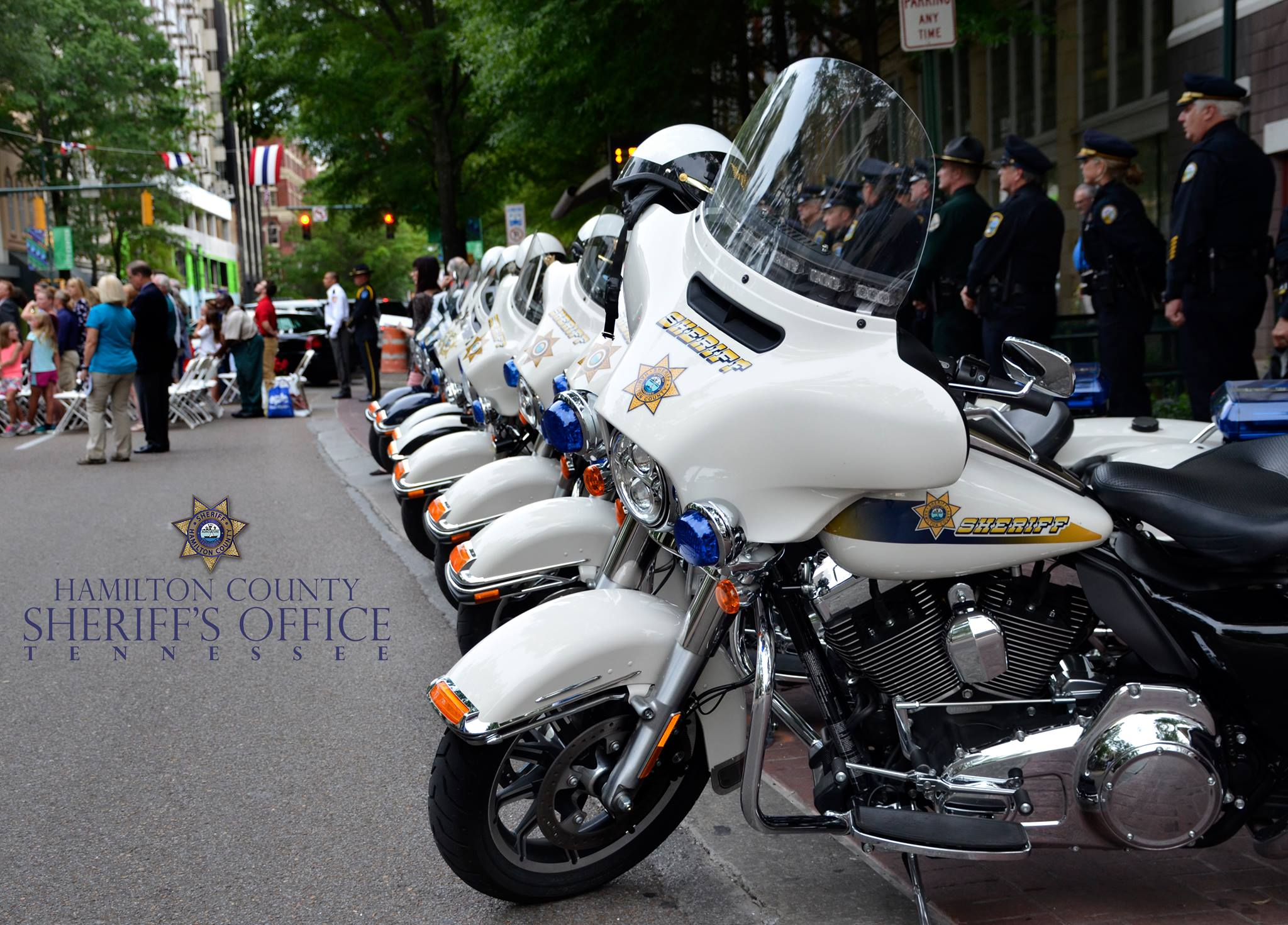 Dwi Hit Parade Over 3 438 727 Visitors Tennessee