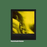 Polaroid Duochrome 600, instantâneos amarelo e preto 6