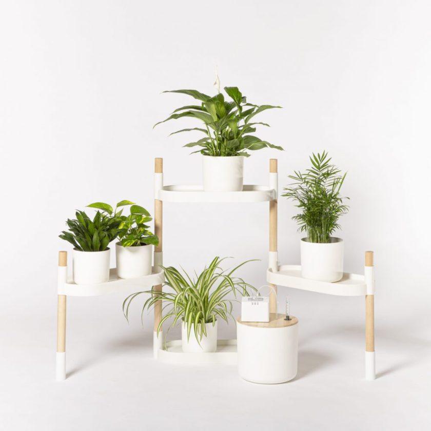 Estantería modular CitySens Diseño : Agencia de Diseño Lúcid Empresa : Citysens Designs SL