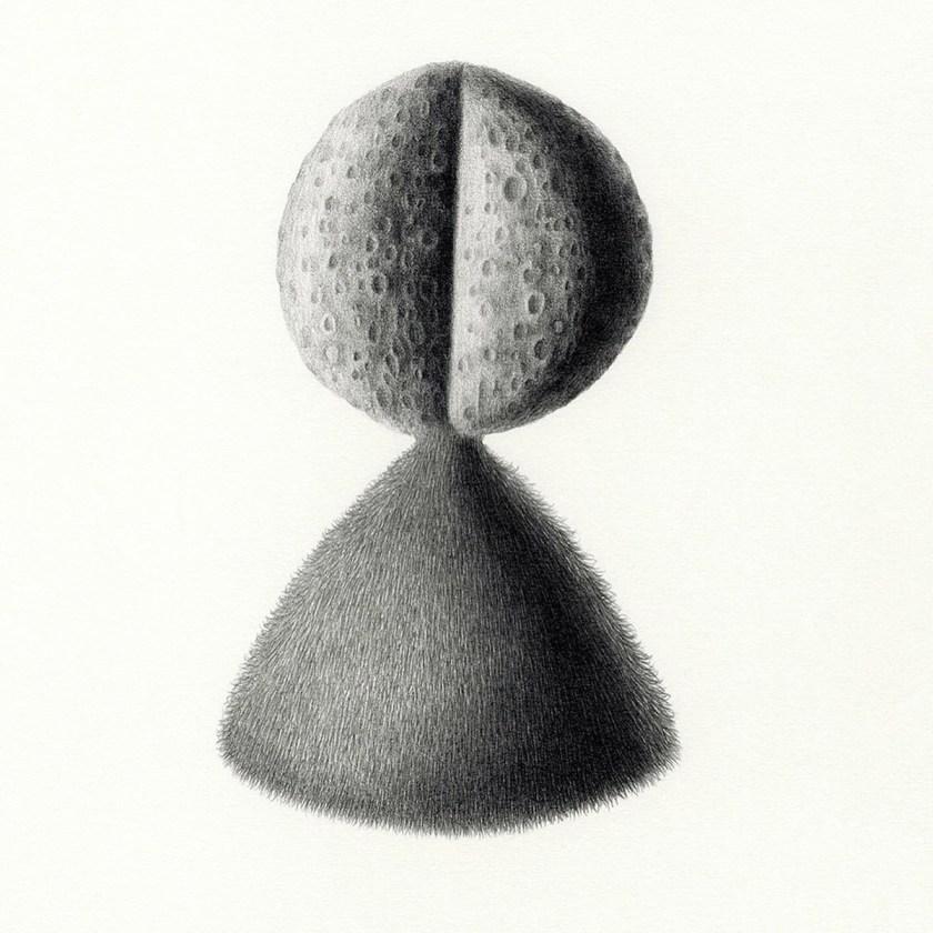 felipe-ortega-regalado-amor-vegetal-de-huerto-y-de-bosques-17