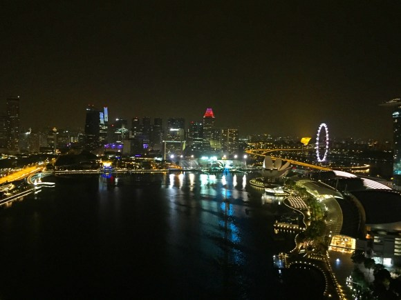 marina-bay-at-night-singapore-dyandra-raye