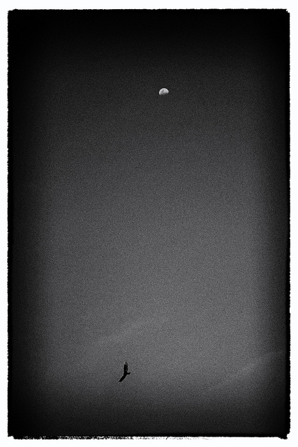 Moony Sea