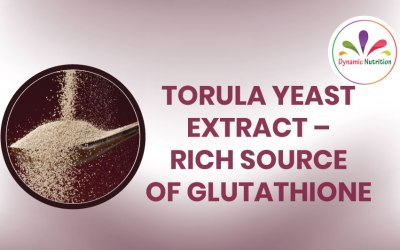 TorulaYeast Extract – Rich Source of Glutathione