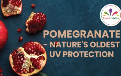 Pomegranate – Nature's Oldest UV Protection