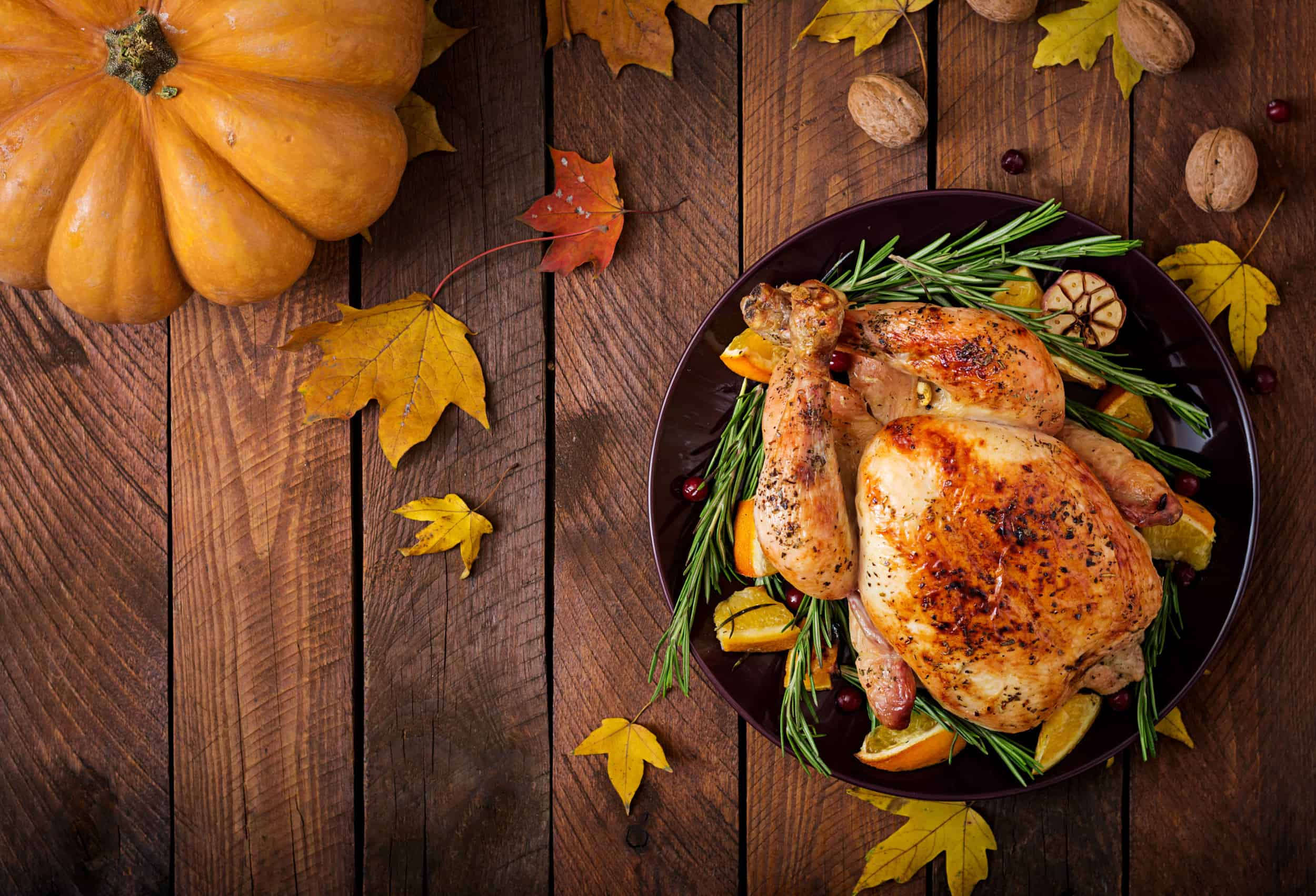 Happy Thanksgiving for Dynamic Transit