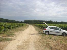La Peugeot 207 Dynamique Hydro dans un champ au bord de la Beaume