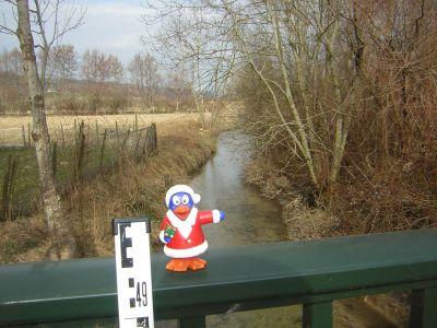 Pingui la mascotte depuis toujours sur le garde-fou d'un pont au dessus de la Bourbre