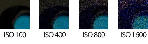Detalle ISO