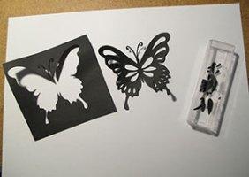 butterfly-1510_anyssa_03-300w
