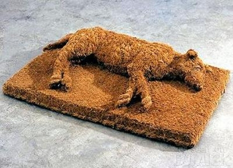 sleeping dog-doormat