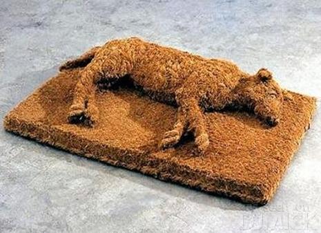 sleeping dog-doormat