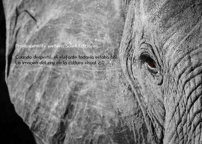 Cuando despertó el elefante todavía estaba ahí. La imagen del rey en la cultura visual 2.0