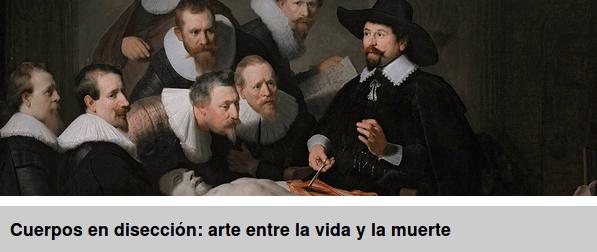 Curso: Cuerpos en disección: arte entre la vida y la muerte