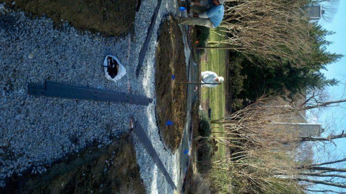 The rose garden project, in progress