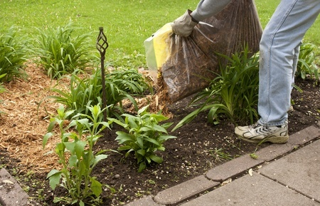 What are the different types of mulch for landscaping?