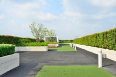 green_rooftop