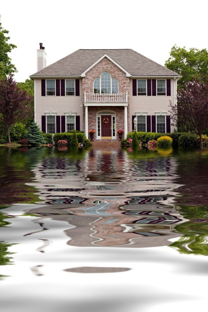 Four Ways To Protect Your Landscape from Severe Weather