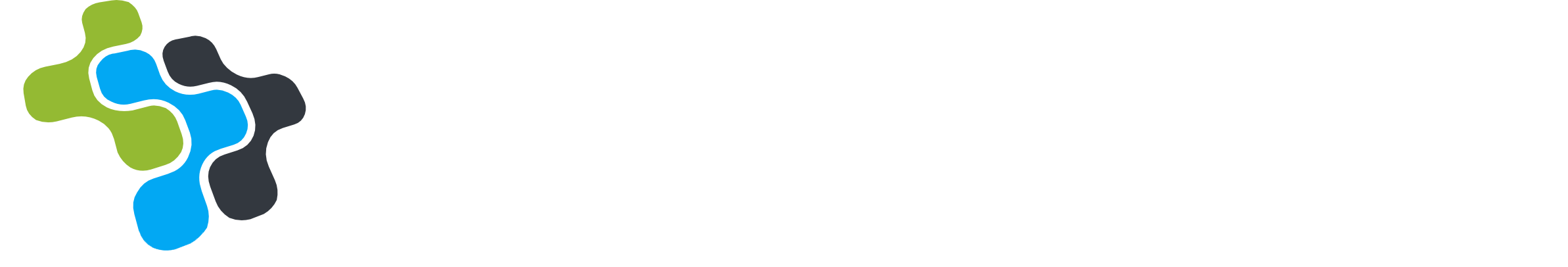 E Netwerk